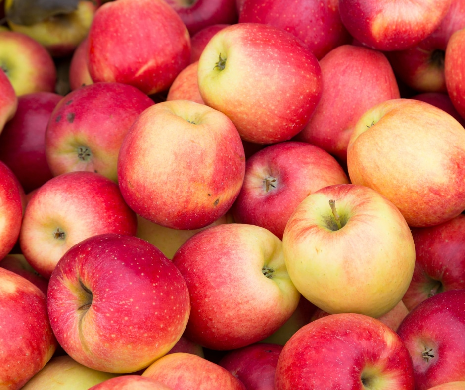 Artisan Organic Apples